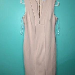Calvin Klein blush dress